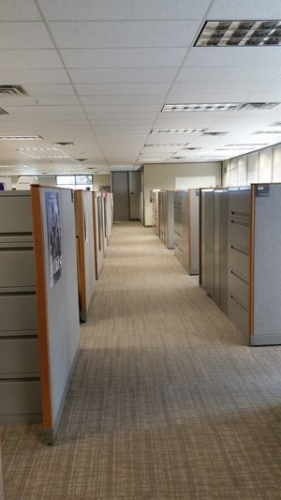 Corridor in Open-Office Cubicle Space