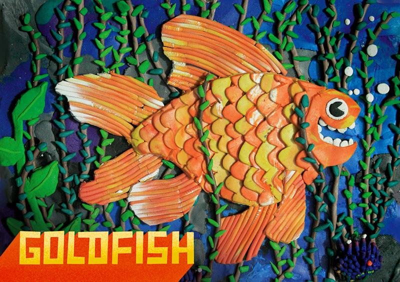 goldfisch3_front.jpg