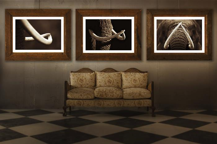 Three 'standard' sized prints on display at Amatuli Artifacts exhibition - September 2013