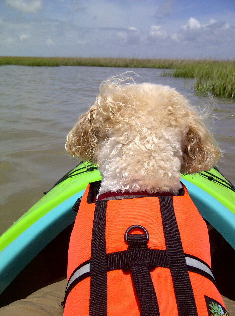 Kayak Matagorda Bay With Your Best Friend