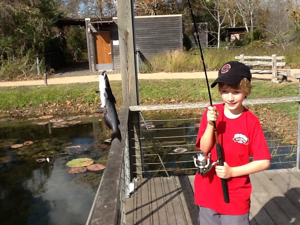 Great green quest houston wilderness for Sheldon lake fishing