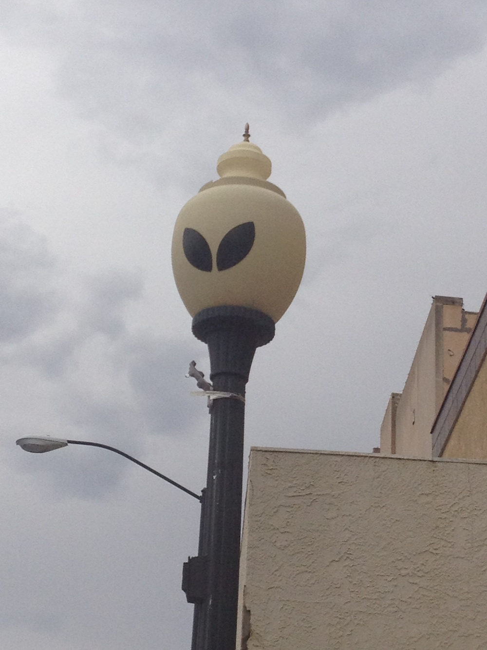 Roswell-street-light.jpg