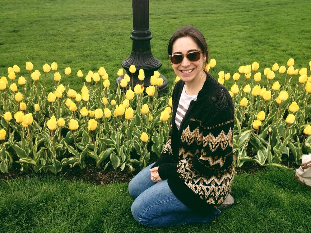 tulips-me.jpeg