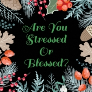 Stressed or Blessed. Nov. '17.jpeg