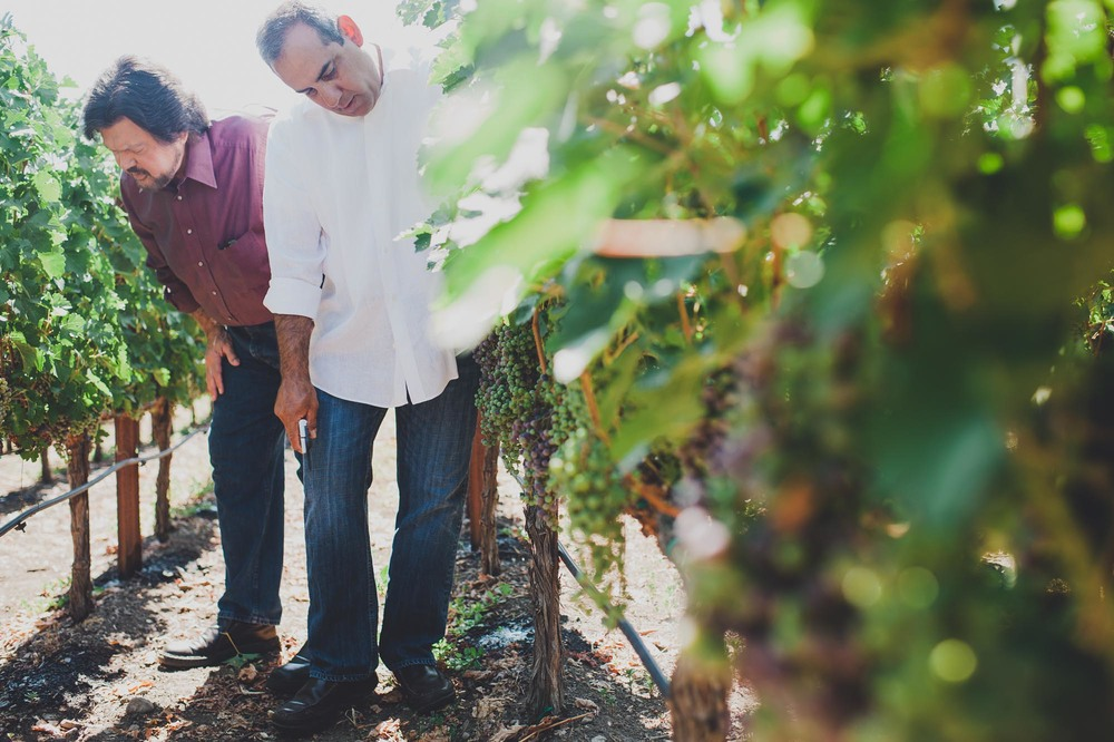 Ed Sbragia and Chris Madrigal in the estate vineyard