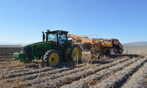 Tractor-bulker.jpg