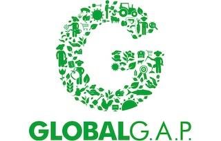 G_Logo_235px.jpg_1858531603.jpg