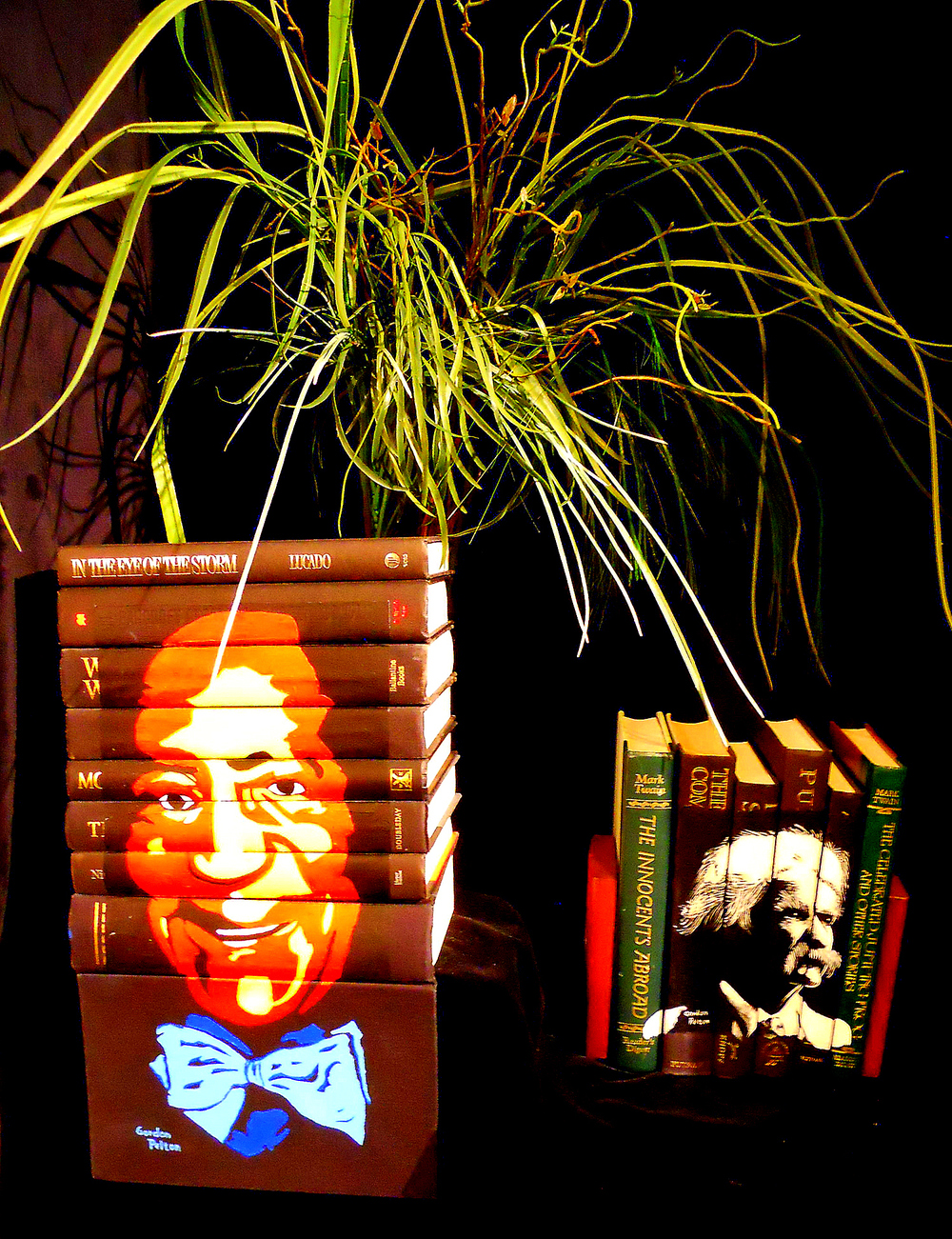 Cosby and Twain on Display Acrylic on Book Spines