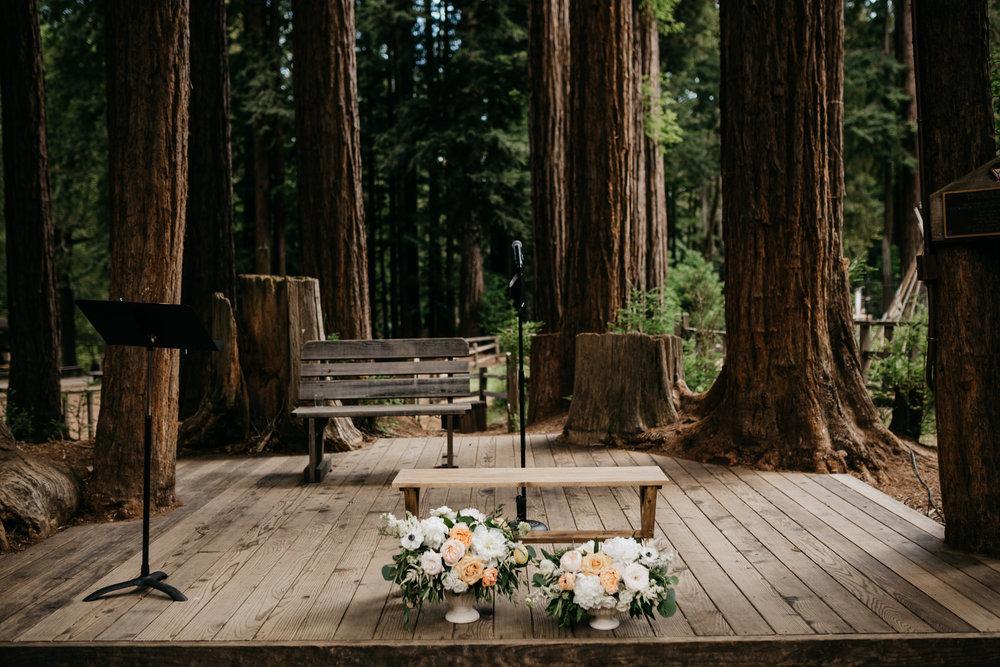 redwoods-wedding-photographer354.jpg