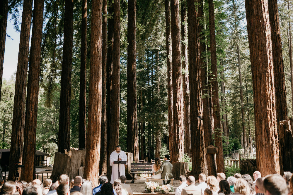 redwoods-wedding-photographer428.jpg