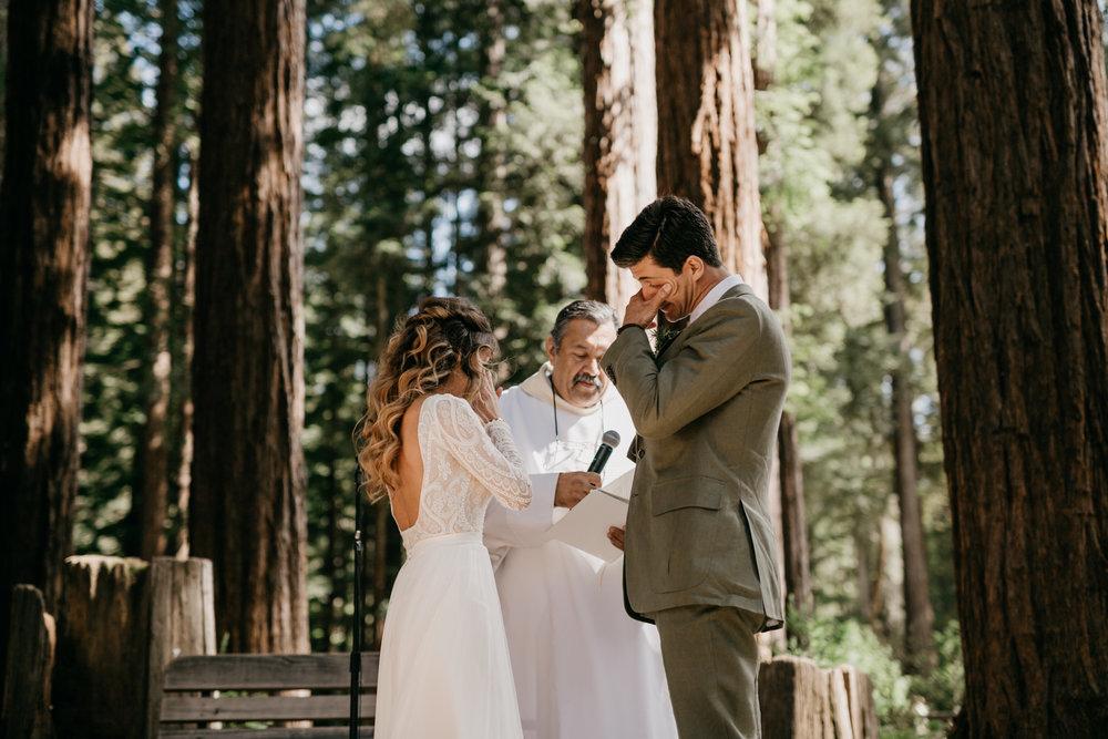 redwoods-wedding-photographer461.jpg