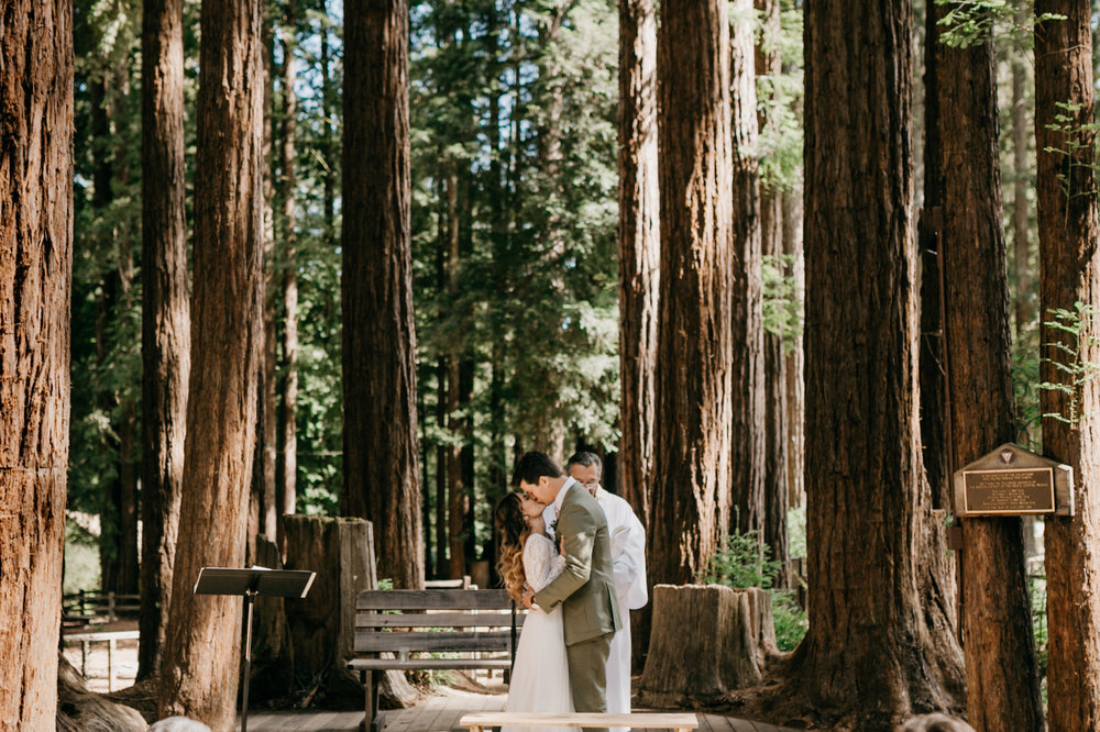 redwoods-wedding-photographer469.jpg