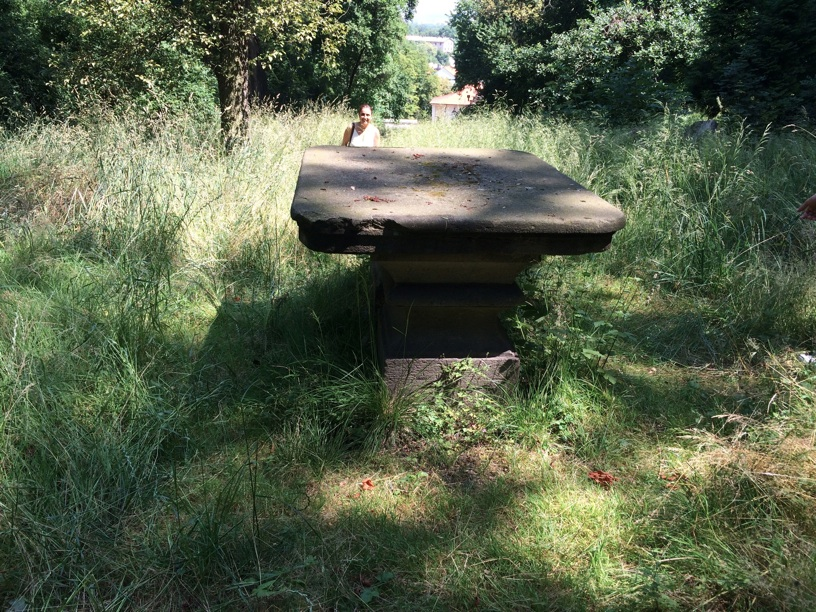 Stone table in the back of Betramka where I was told Mozart composed—now just concrete ruins in a beautiful but weed-strewn hilltop