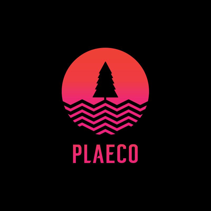 plaeco_2018_vibes_logo_.jpg