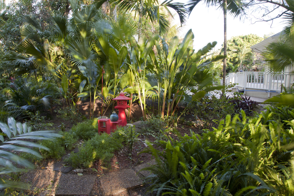 Tropical backyard pathway
