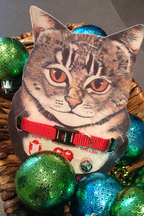 These cat collars, available in several collars, are priced reasonably at $8.50 and include a nametag, belland reflectors for your outdoor kitty's safety (and the safety of the birds in your backyard feeder!).
