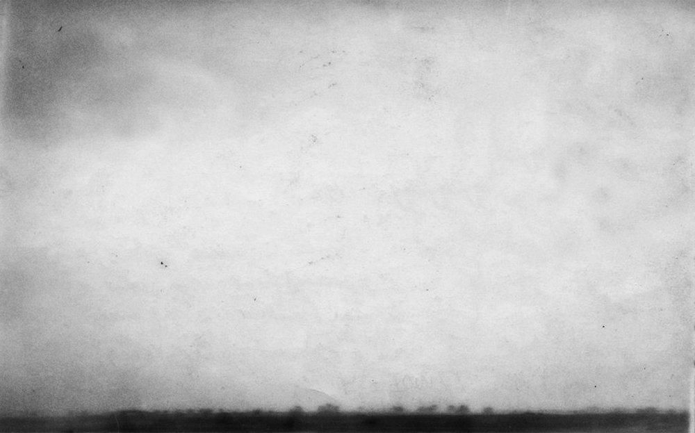 Untitled #61 (Taube), 2009
