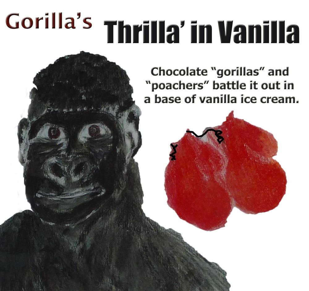 Gorilla_detail.jpg