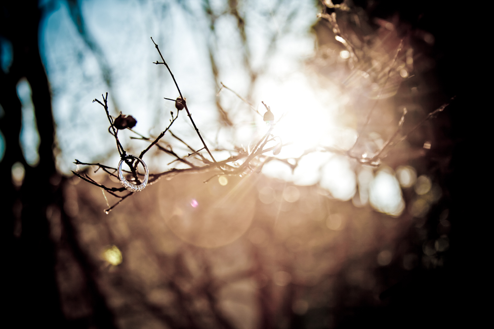20111204-IMG_1034-Edit.jpg