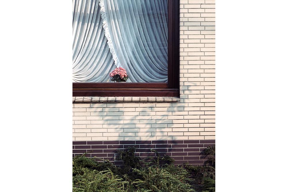 Blumen_Gardine_Web.jpg