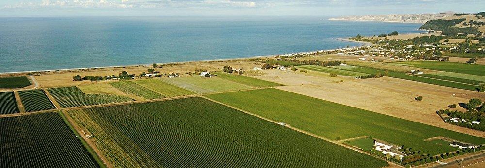 Aerial Te Awanga.jpeg