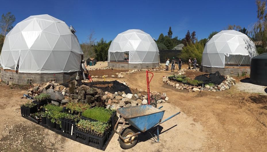 future garden uc best.JPG
