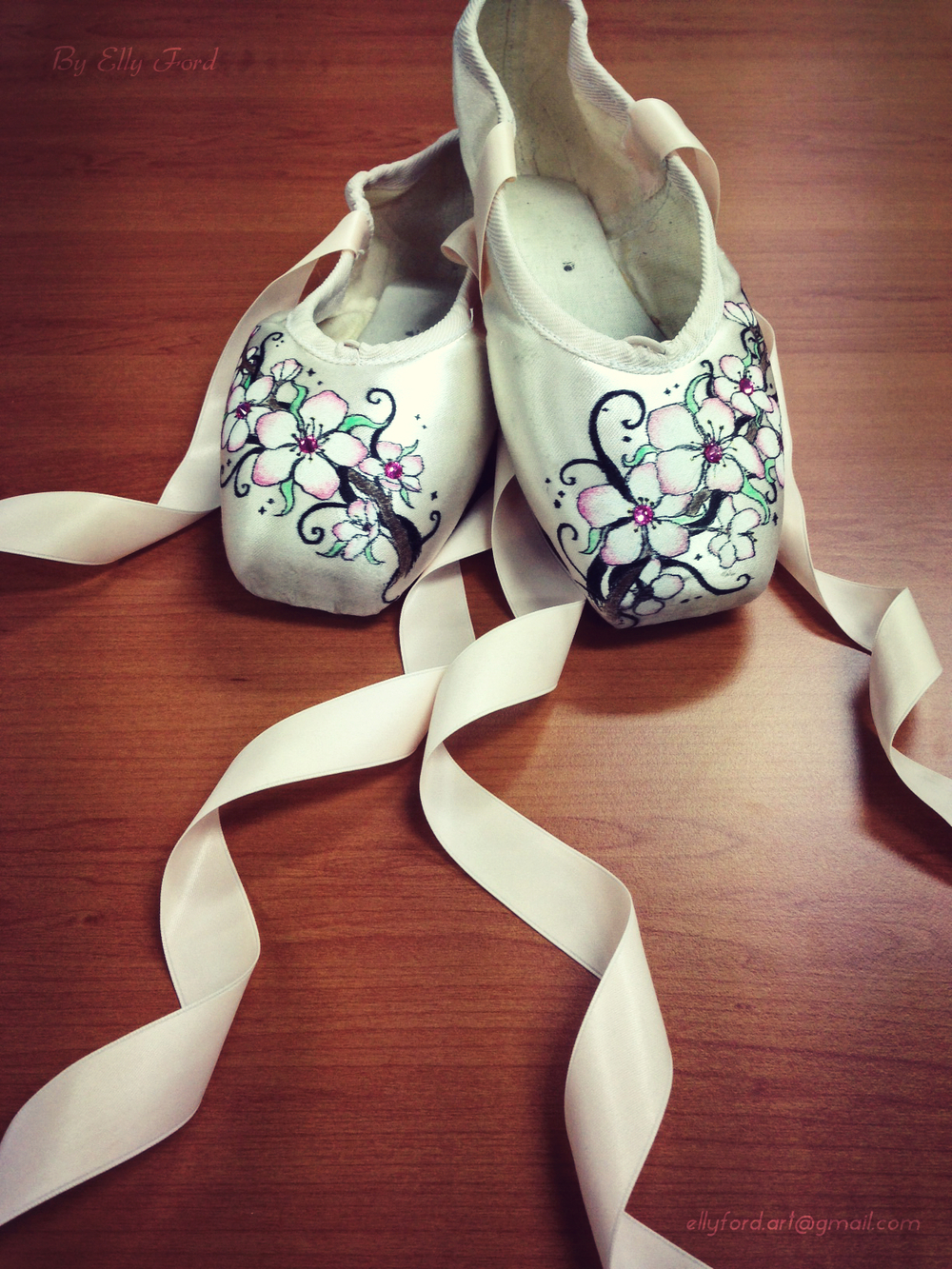 Blossom's pretty Pointe Shoes (artist: Elly Ford)