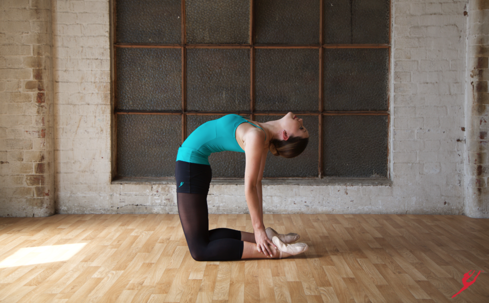 Image 3. Basic stretch