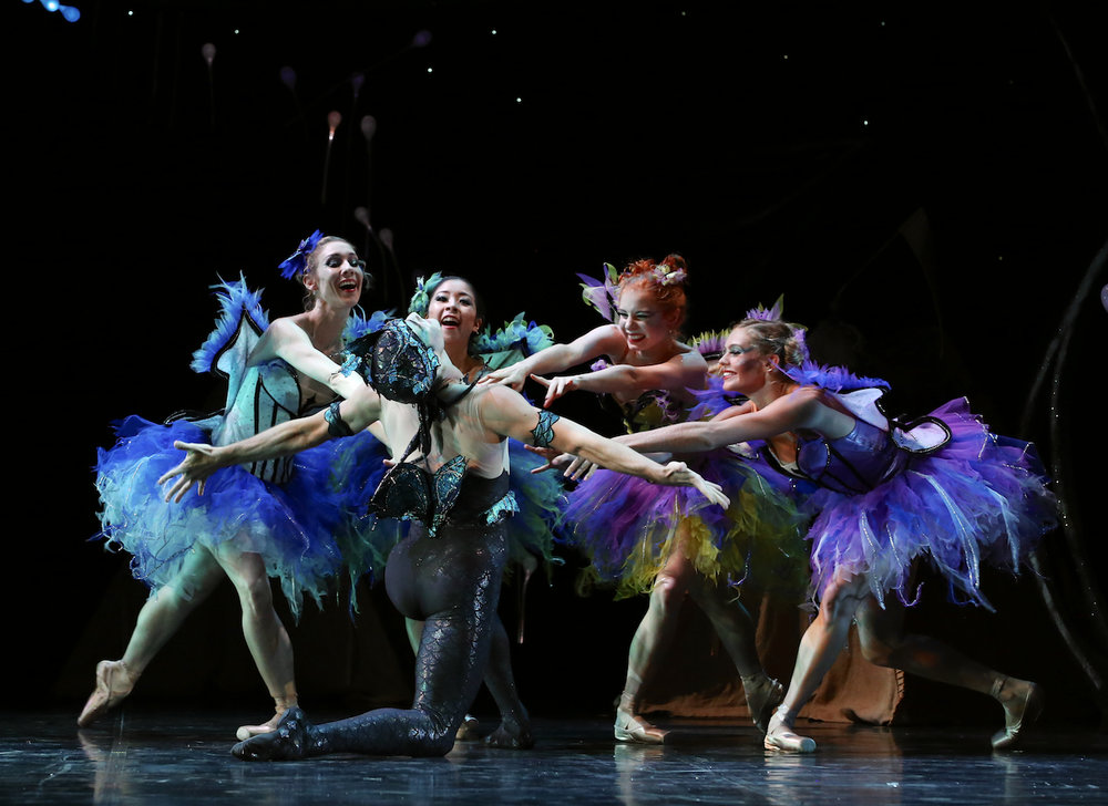 Queensland Ballets Midsummer Nights Dream - David Power. Photo David Kelly 2.jpg