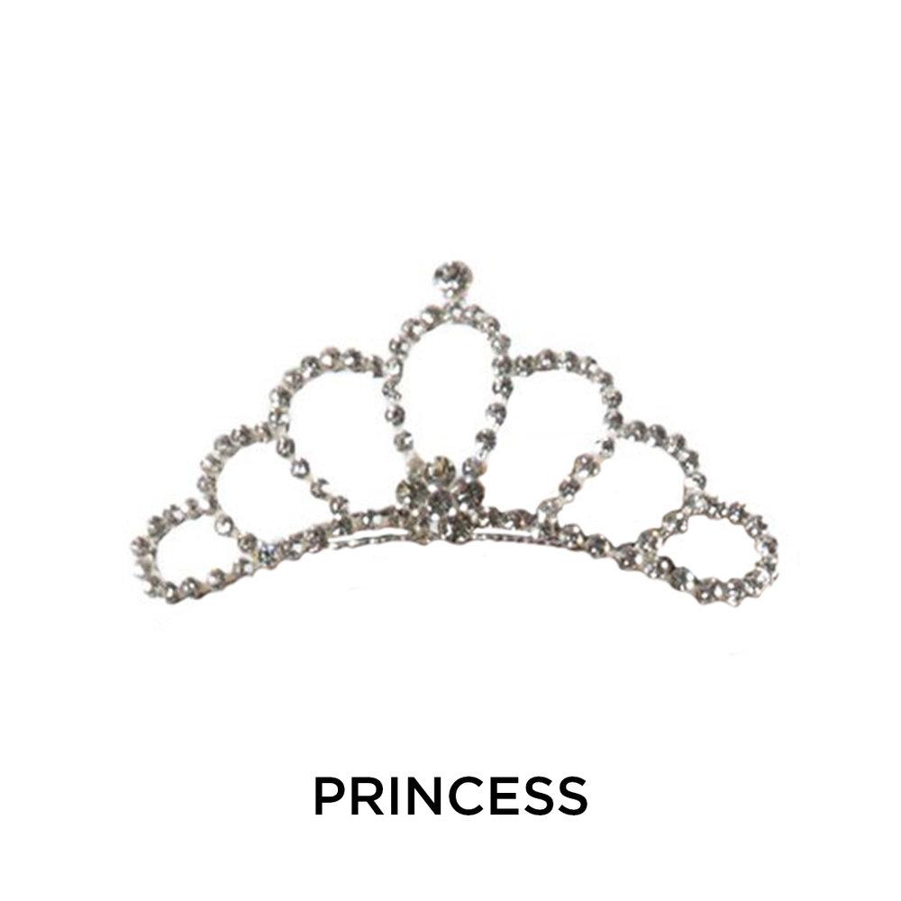 H050-Silver-Princess-1.jpg