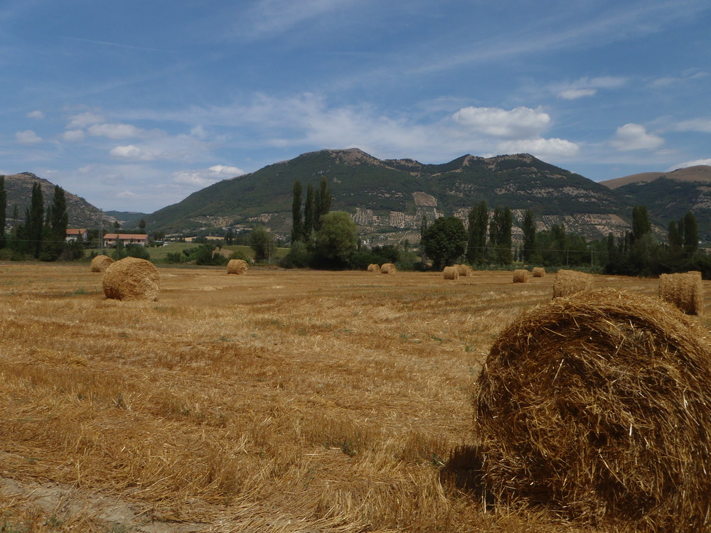 CRO Italy web 2012 - 37.JPG