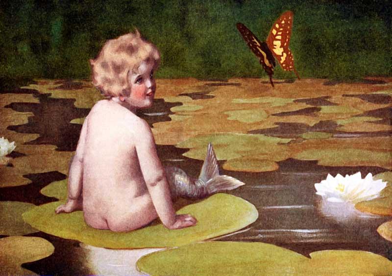 mermaid_butterfly-pond-800.jpg