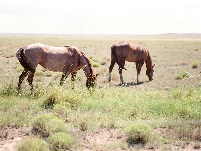 marfa-texas-film-photography-cody-hunter-photography-032.jpg
