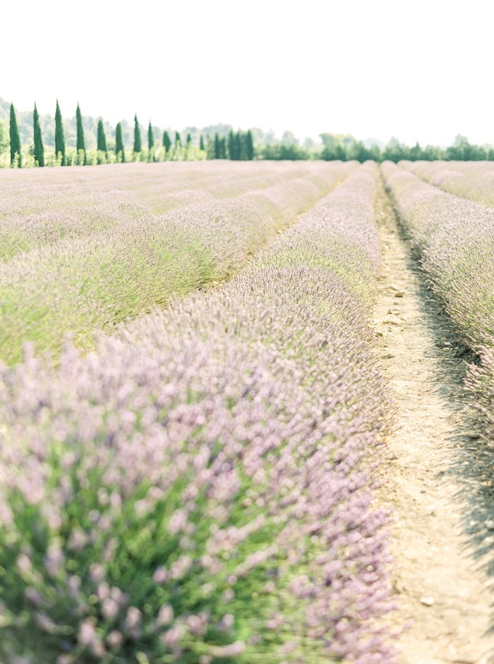 provence-france-film-wedding-photographer-4549_07.jpg