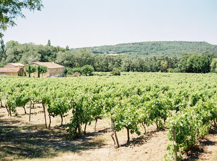 provence-france-film-wedding-photographer-4612_14.jpg