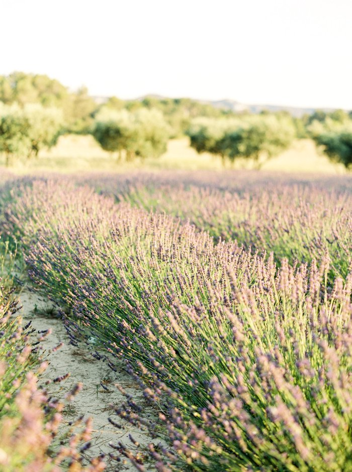 provence-france-mas-de-la-rose-destination-film-wedding-photography-4542_02.jpg