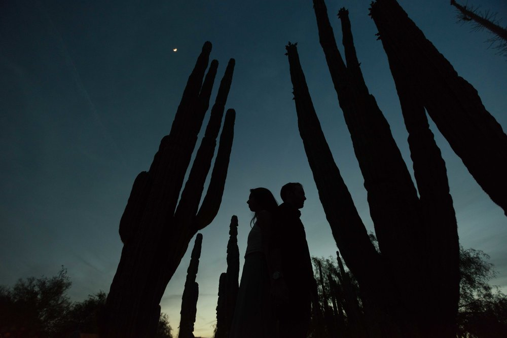 Scottsdale, Arizona Couples Photographer - Desert Botanical Gardens