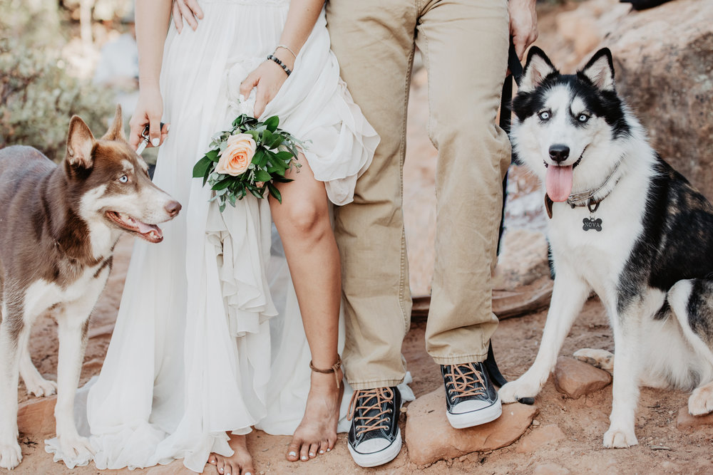Desert Elopement with Dogs - Sedona Arizona Photographer