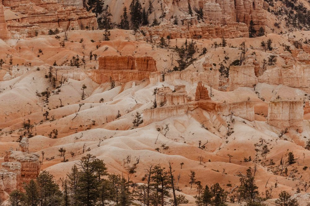 Bryce Canyon Elopement Photographer - Winter Elopement Locations