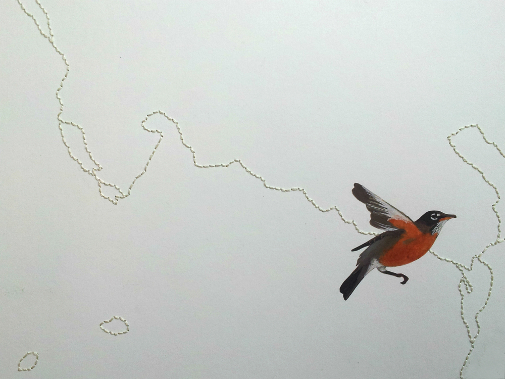 A robin follows the meandering line that is the Fox River.