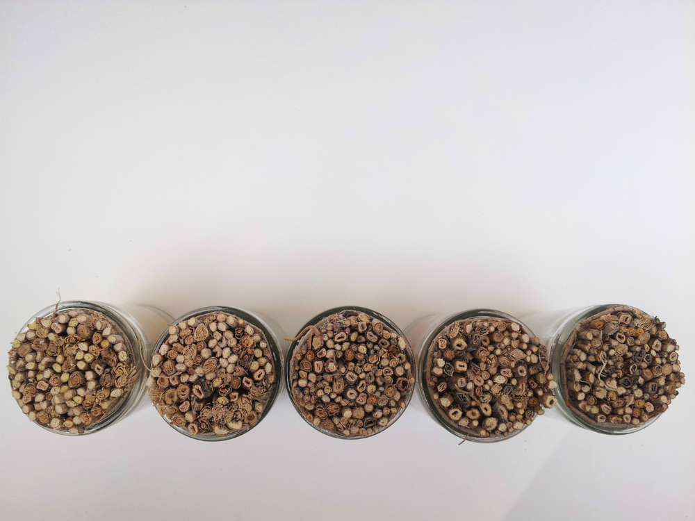 Little Princes   installation, handcrafted corks, view from above