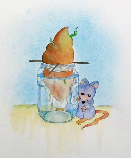 Mouse-w.jpg