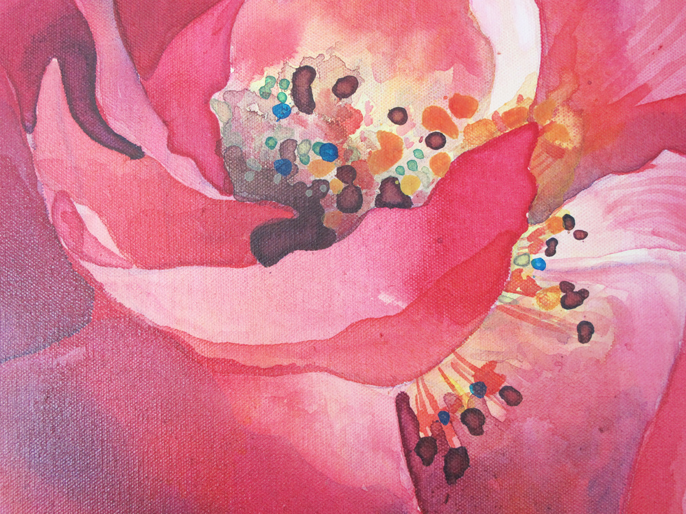 close up wild roses painting