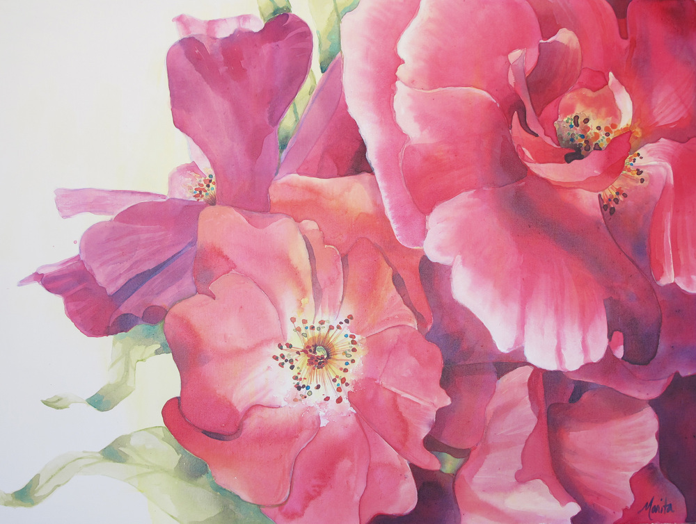 Painting by Marita Gentry ... Wild Roses