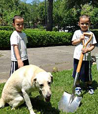The twins and temple dog, Baku, help out in the garden.