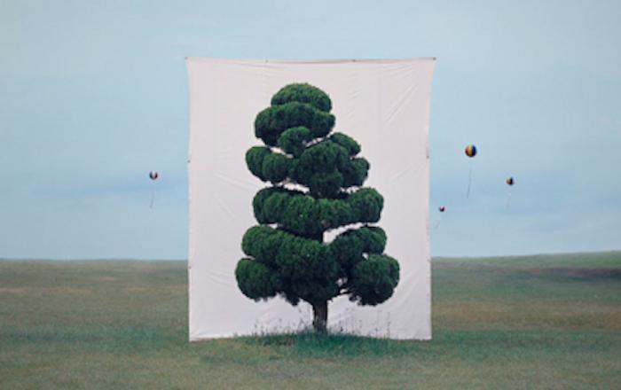 TREE ART.
