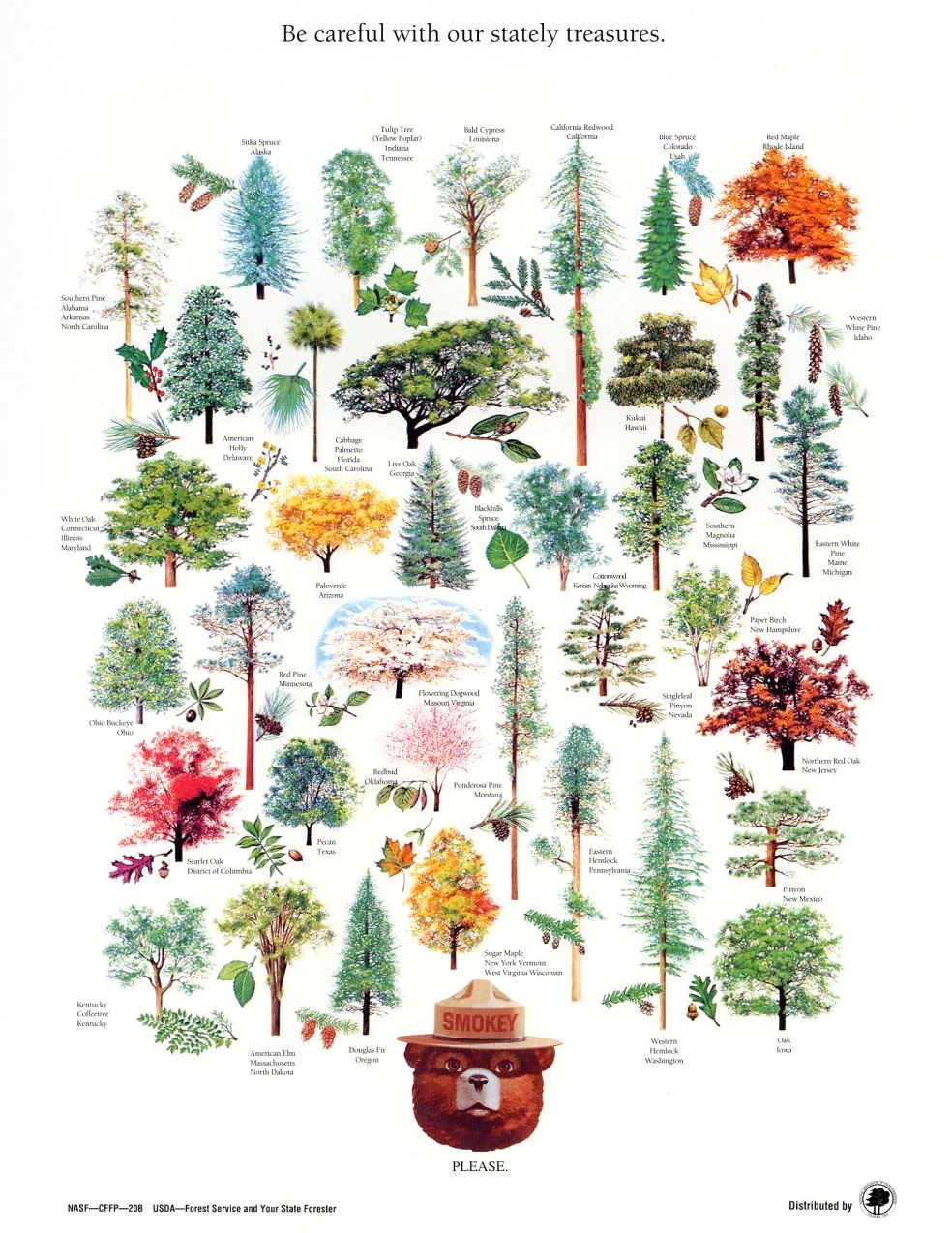 LIST OF STATE TREES