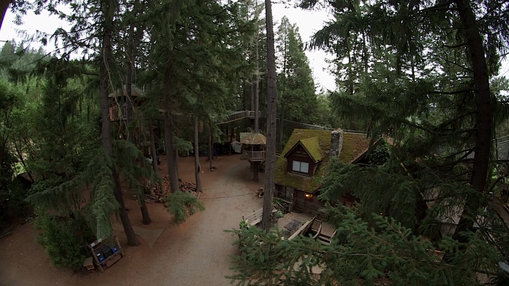 ADULT TREEHOUSES (video)
