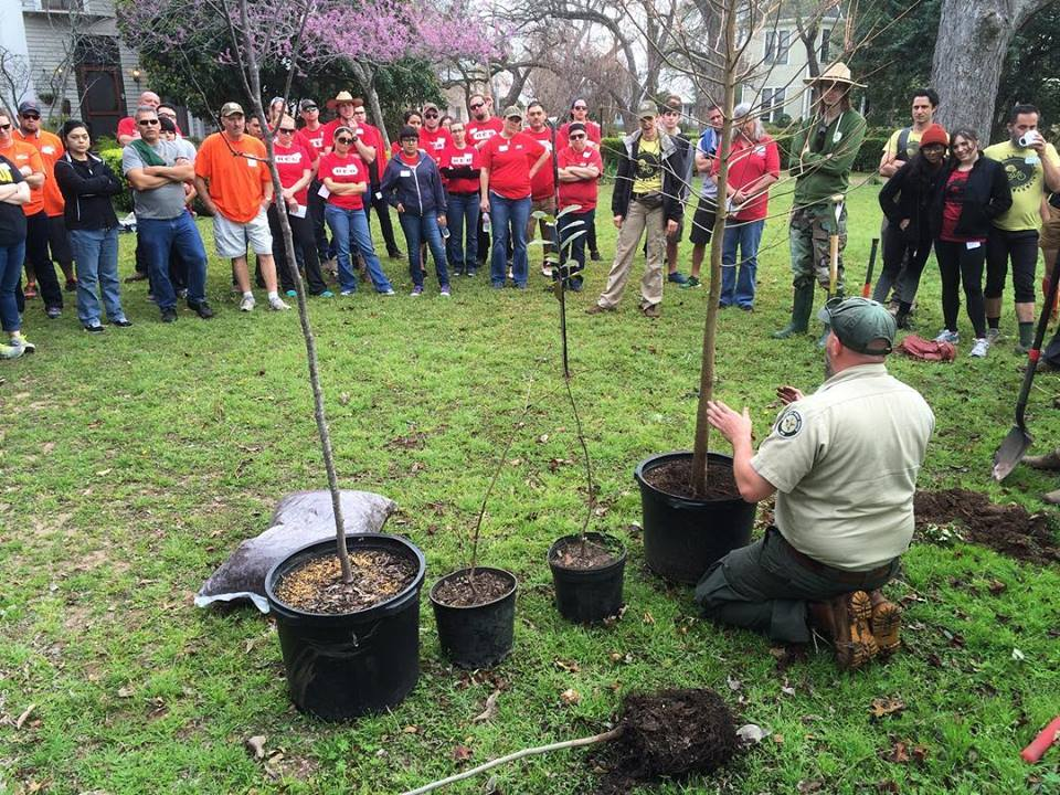 PROPER TREE PLANTING TECHNIQUES WITH TEXAS A&M FOREST SERVICE