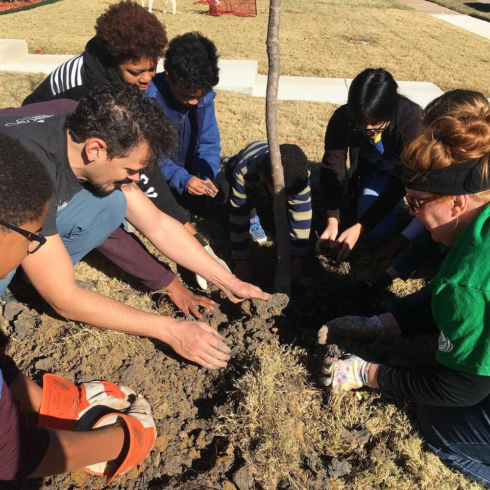 A GROUP OF VOLUNTEERS PLANTS A TREE IN ROWLETT